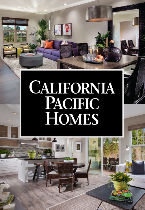 Dynamic captivating extraordinary home collections for Pacific home collection